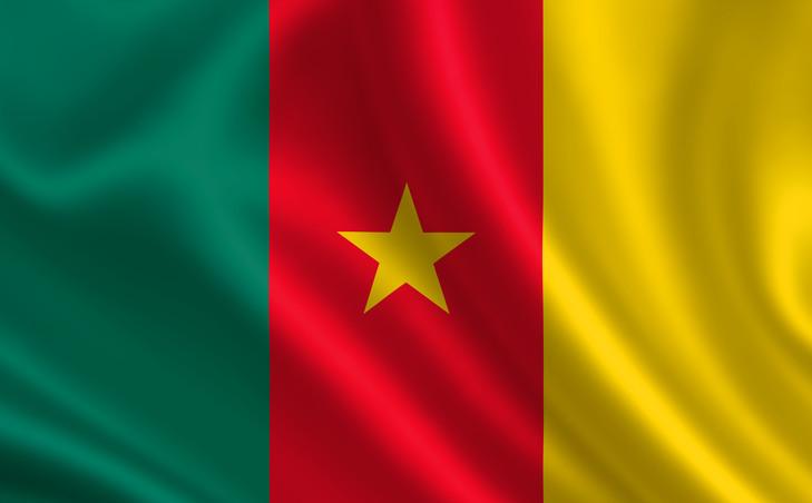 CAMEROUN:AFFAIRE LFPC-FECAFOOT