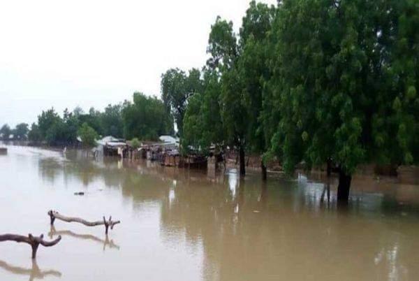 Alibori: Les dégâts du débordement de l'eau