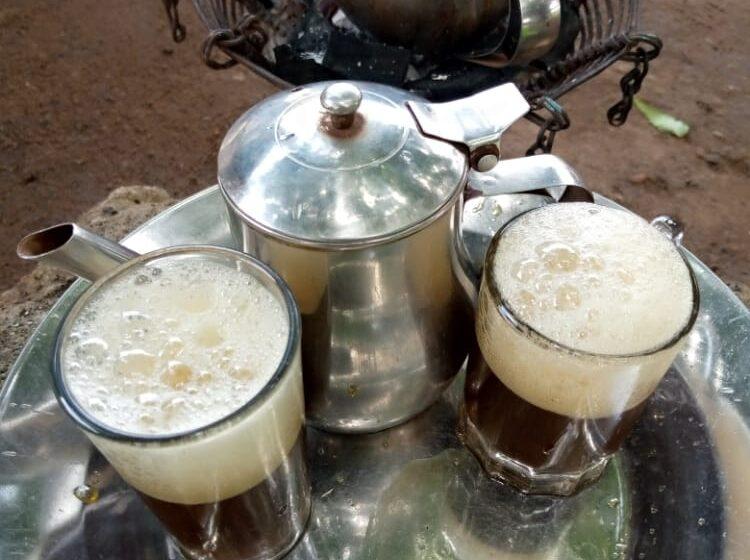 Santé : Les bienfaits du thé vert