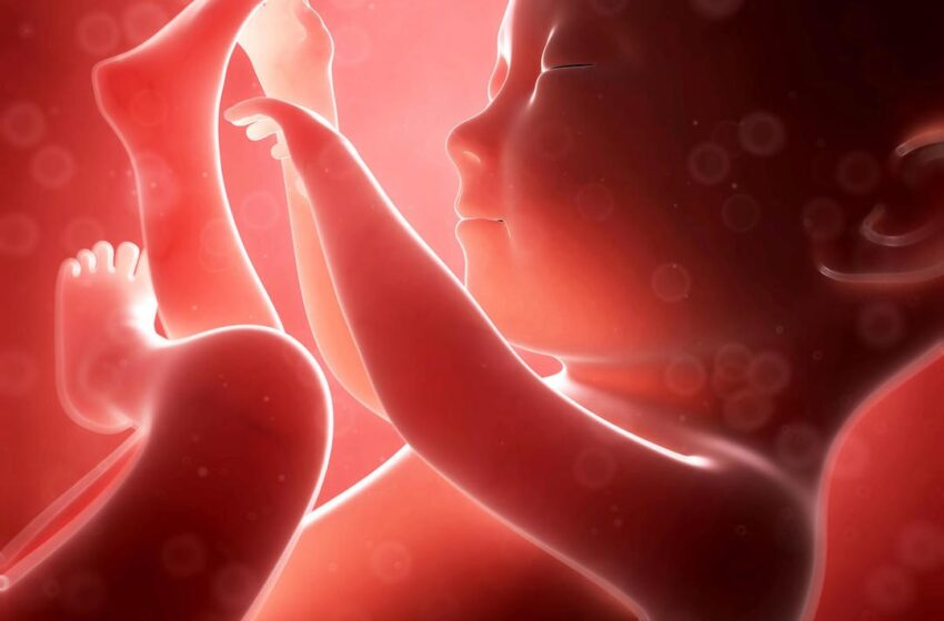 Avortement clandestin: Une immoralité destructrice