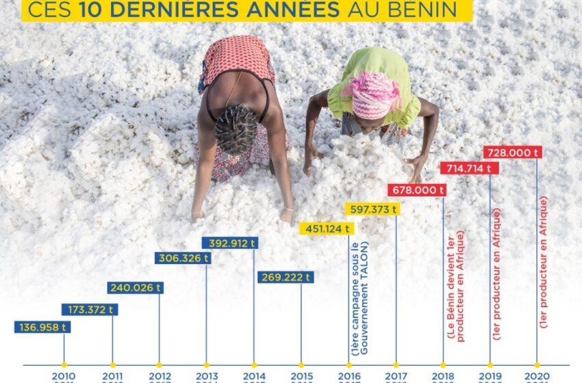 Production cotonnière en Afrique de l'Ouest: Un nouveau record pour le Bénin