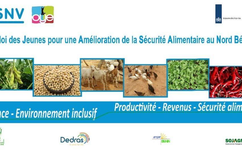 Promotion de l'agriculture à Natitingou: Un projet innovateur pour les jeunes