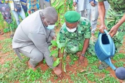 Journée nationale de l'arbre : La vallée de l'Ouémé aux couleurs vertes