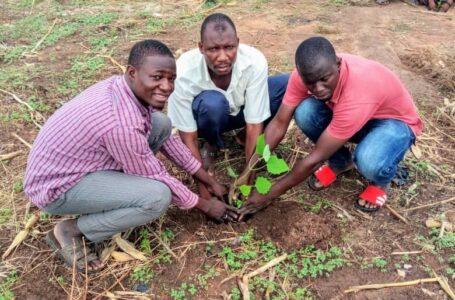 Kandi : Célébration de la journée mondiale de l'environnement