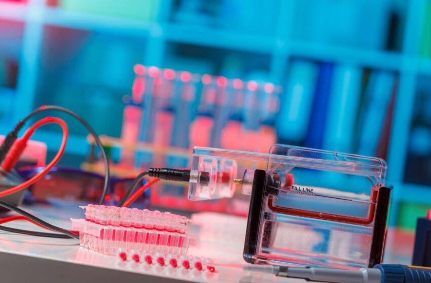 Electrophorèse: Un test qui s'impose