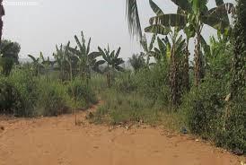 Opérations de lotissement au Bénin: Une charge désormais assignée aux comités techniques