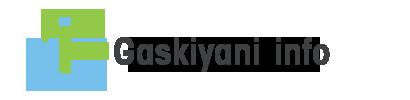 Gaskiyani Info : La force d'une équipe